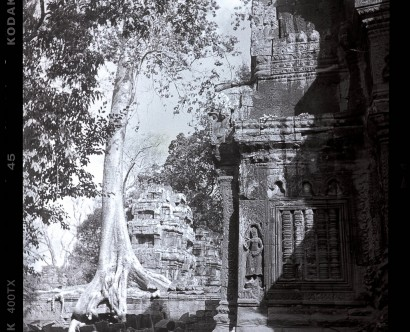 Photographe voyage Hyères var toulon marseille monaco