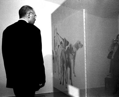Photographe événementiel Hyères var toulon marseille monaco